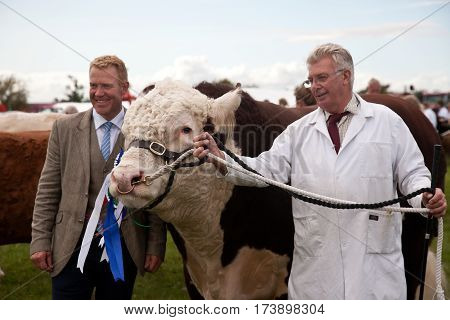 WEEDON, UK - AUGUST 27: Celebrity judge Adam Henson congratulates some of the winners in the cattle class competitions at the Bucks County show on August 27, 2015 in Weedon