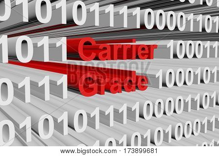 carrier grade in the form of binary code, 3D illustration