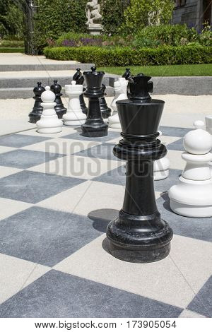 Street chessboard with chessmen and green plants as background in Europe