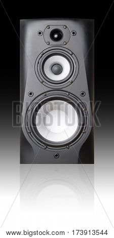 Triaxial speaker on black background.