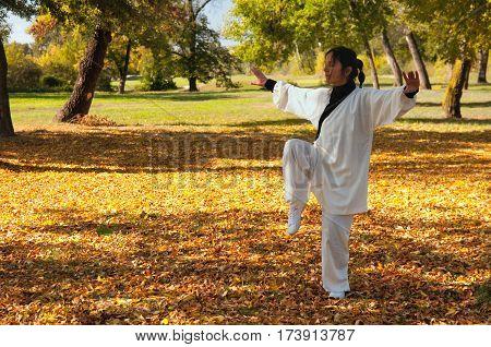 Woman doing Ki Gong on field, color image