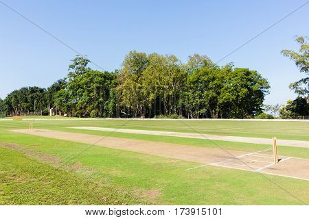 Cricket field pitch's wickets markings grounds teams players summer sport.
