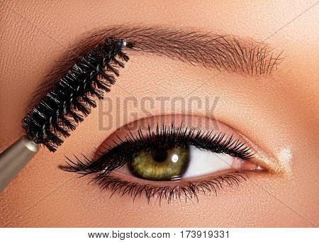 Fashion Woman Applying Eyeshadow, Mascara On Eyelid, Eyelash And Eyebrow Using Makeup Brush. Profess