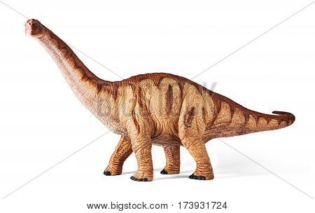 Apatosaurus dinosaurs toy isolated on white background with clipping path. Late Jurassic period.