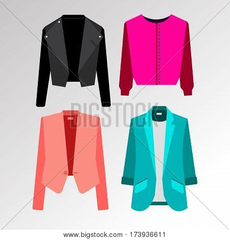 fashion vector jacket clothing womens casual illustration collar buttons sleeves jacket