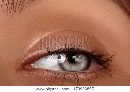 Close-up Macro Of Beautiful Female Eye. Clean Skin, Fashion Naturel Make-up. Good Vision
