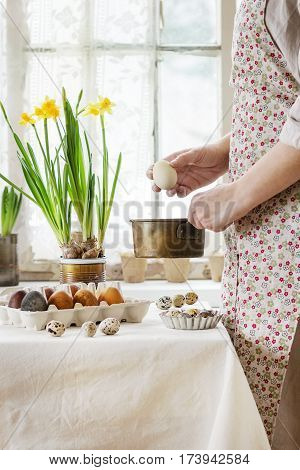 Preparing for Easter. Female hands with color Easter egg under pan near white tablecloth table decorated brown colored eggs and yellow flowers with window as background. Day light