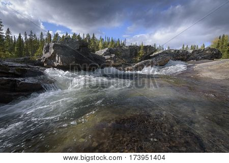 Turbulent clear waterfall in Sweden in sunny pine wood landscape