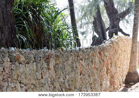 Surrounding wall of a private property with sherds of bottles on top in the town of Bamburi in Kenya