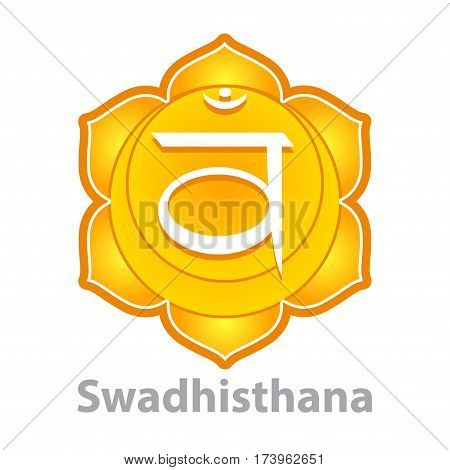 Chakra swadhisthana isolated on white vector illustration