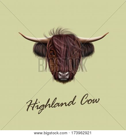 Vector Illustrated portrait of Highland cattle. Cute head of Scottish cattle on tan background.