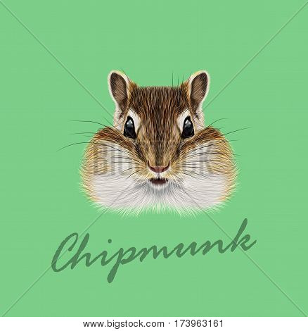 Vector Illustrated portrait of Chipmunk. Cute head of wild mammal on green background.