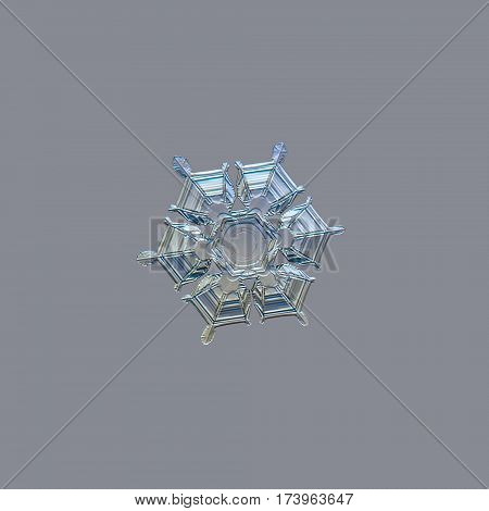 Snowflake isolated on uniform light grey background: real snowflake macro photo, captured on glass surface with LED back light. This is medium sized stellar dendrite snow crystal.