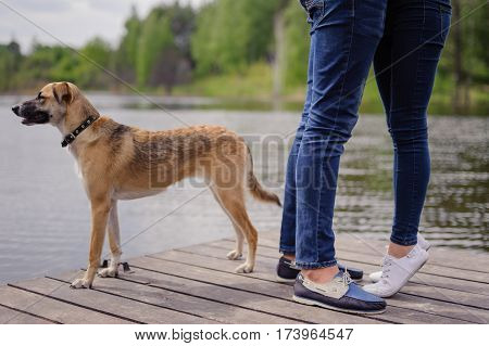 Beautiful loving couple at the lake, with dog, a love story, feeling beautiful, sunny and smiling