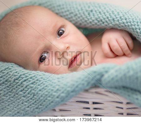 closeup portrait of sleeping cute newborn baby