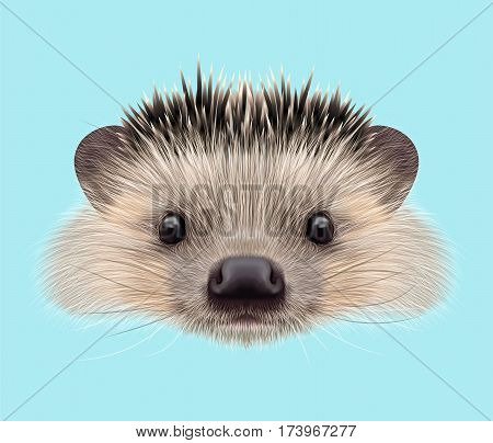 Illustrated portrait of Hedgehog. Cute head of wild spiny mammal on blue background.