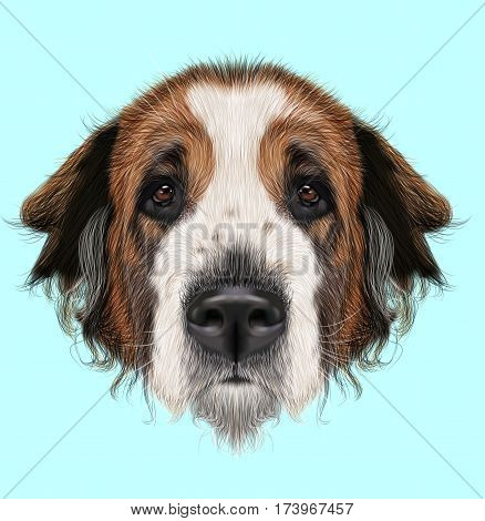 Illustrated Portrait of Moscow Watchdog dog. Cute face of domestic breed dog on blue background.