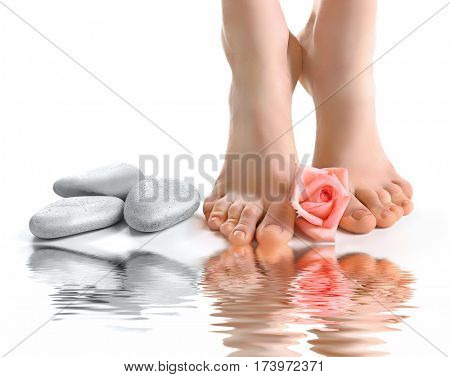 Female feet with rose and reflection on water surface, white background. Spa concept