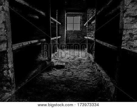 Birkenau women's quarters, 16 women slept here