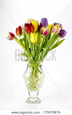 View of a glass vase and tulips on a plain background.