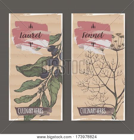 Two color labels with laurel and fennel sketch. Culinary herbs collection. Great for cooking, medical, gardening design.