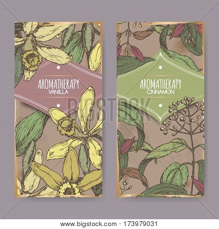 Set of two labels with Vanilla planifolia aka Vanilla and Cinnamomum verum aka cinnamon color sketch on vintage background. Aromatherapy series.