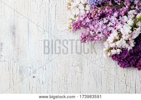 Bunch Of Lilac Flowers On A White Crackling Effect Background. Top View. Copy Space.