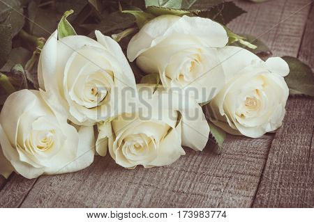 Soft full blown white roses as a neutral background on wooden board. Selective focus. Toned image. Close up.