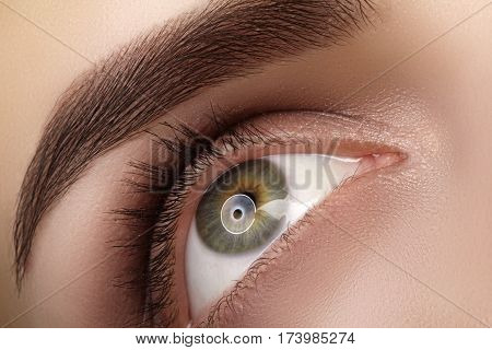 Close-up Macro Beautiful Female Eye With Perfect Shape Eyebrows. Clean Skin, Fashion Natural Smoky M