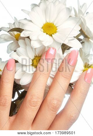 Manicured Nails With Natural Nail Polish. Manicure With Pink Nailpolish. Fashion Manicure. Shiny Gel