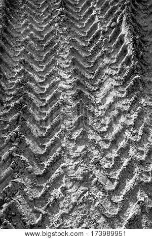 Black and white image of a wheel tracks on the earth closeup.