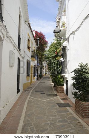 Flowers and plants on white walls of a narrow street in the city of Marbella Andalusia spain