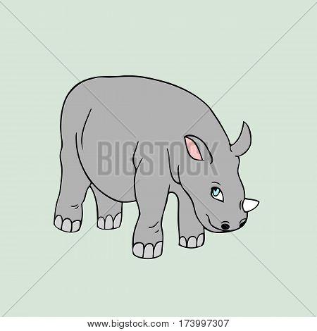 illustration of baby rhinoceros. Isolated cartoon animal