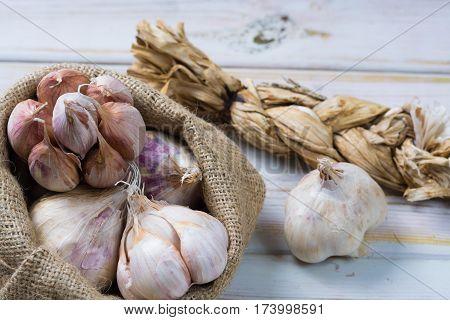 Garlic. Dried French garlic. Red garlic. Violet garlic.Garlic background. garlic bulbs on white