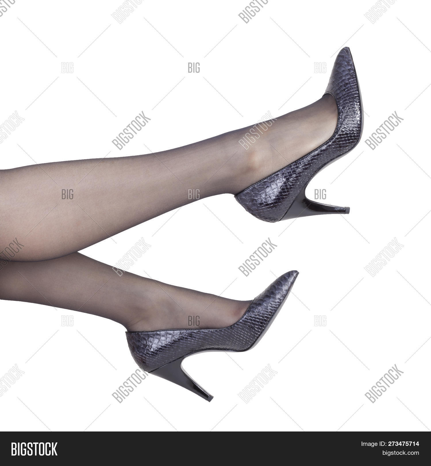 9264c200217 Perfect Female Legs In Black Nylon Stockings And Heel Shoes Isolated On White  Background - Hot