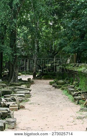 A Peaceful Path Through Moss Covered Ruins In The Jungles Of Cambodia