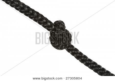 Variants of the rope with node on white background poster