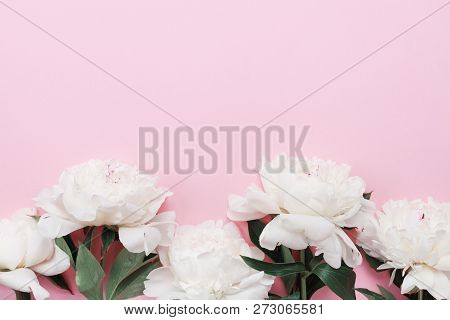 Beautiful White Peony Flowers On Pink Pastel Table Top View And Flat Lay Style. Floral Border For Wo