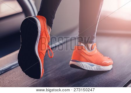 Comfortable Sports Shoes For Running In The Gym. Jogging Shoes For Running On A Treadmill. Safety Wh