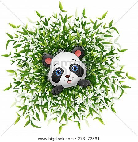 Cute Baby Panda Smiling With Lots Of Bamboo Leaf Isolated White Background