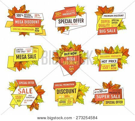 Thanksgiving Offer Only Week At Holidays. Exclusive Price 99.90 Promotional Label With Maple Leaves,