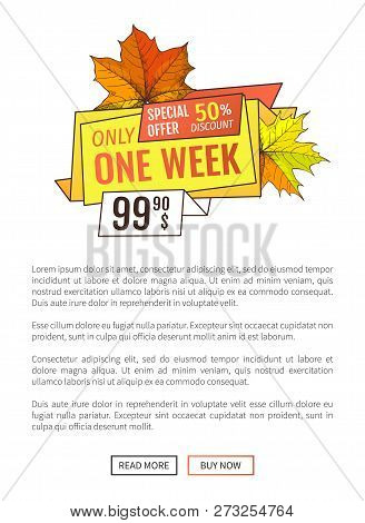 Exclusive Price 99.90 Promotional Poster With Maple Leaves, Oak Foliage Autumn Symbols Advert Emblem