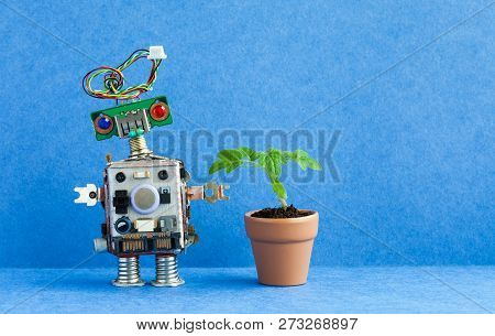 Robot And Flowerpot. Creative Design Robotic Character With Green Plant Housepot . Blue Background,