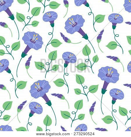 Seamless Floral Pattern With Bindweed On White Background. Perfect For Summer Greeting Cards And Wed