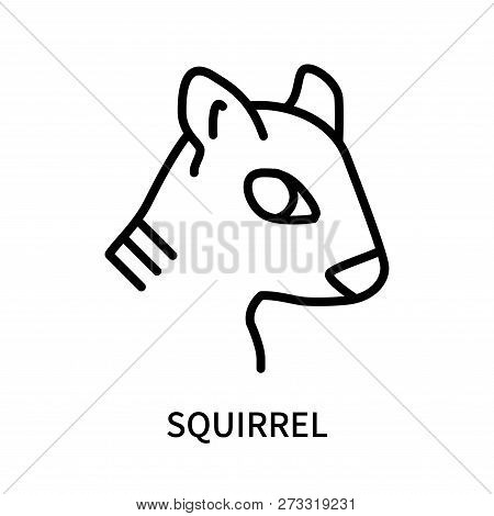 Squirrel Icon Isolated On White Background. Squirrel Icon Simple Sign. Squirrel Icon Trendy And Mode