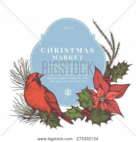 Vector Composition With Colored Pine Branch, Spruce, Gift Boxes, Cardinal, Poinsettia, Holly