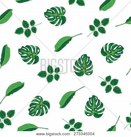 Pattern Tropical Green Leaves Of Plant, Palm And Tree On White Background. Seamless Pattern Green Fo
