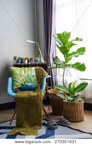 Living Room Interior With Chair And Green Tree