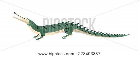 Fish-eating crocodile or gharial isolated on white background. Dangerous exotic predatory reptile. Wild carnivorous animal. Endangered species. Colorful vector illustration in flat cartoon style. poster