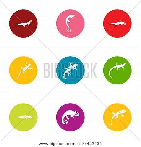 Raptor icons set. Flat set of 9 raptor icons for web isolated on white background poster